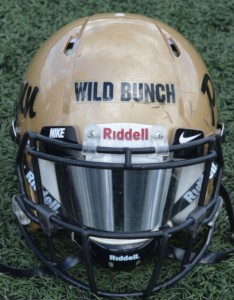 Wild Bunch helmet